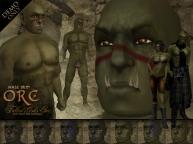 Bolvi Bloodfist Jr. (Corin's son)